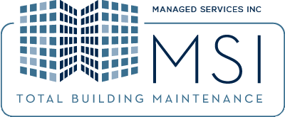 Managed Services Inc